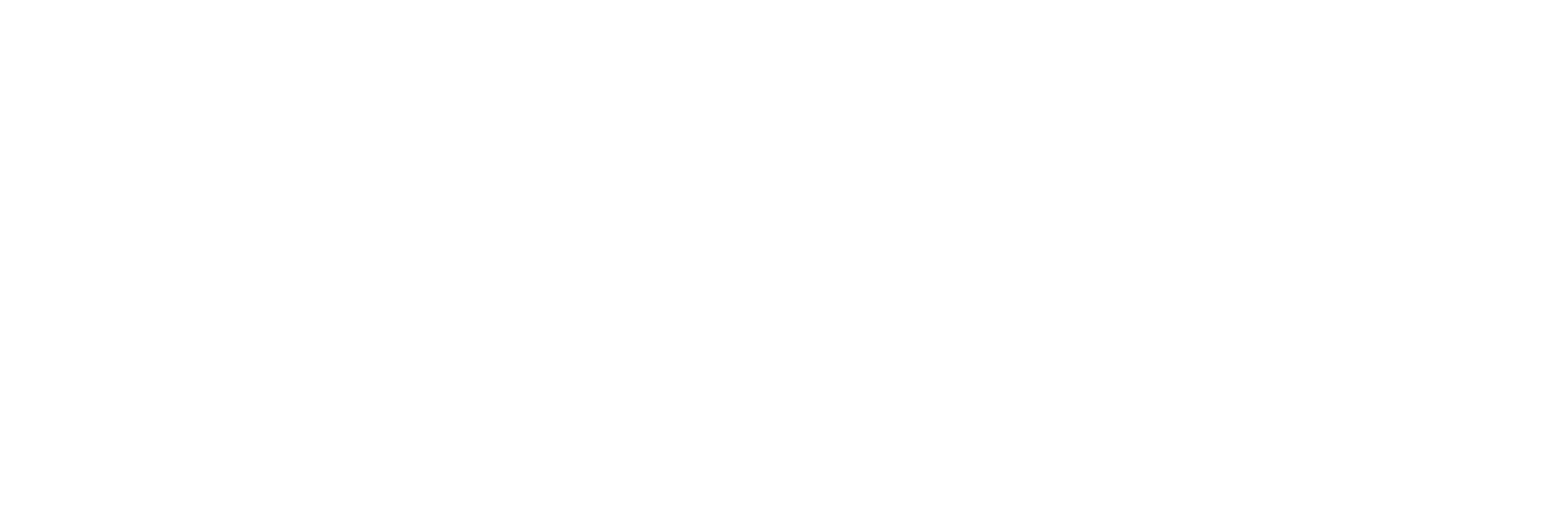 The Consummate Flutist