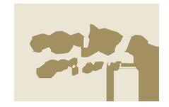 flute pro shop logo